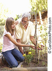 adolescente, nieta, jardín, relajante, aduelo