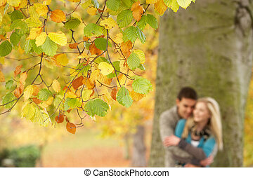 adolescente, romanticos, árvore, par, raso, parque, foco,...