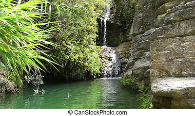 Adonis waterfall, baths. Cyprus. - Adonis waterfall baths on...
