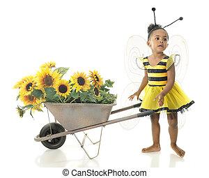 adorável, abelha trabalhador
