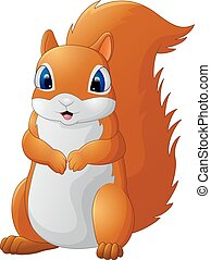 adorável, caricatura, esquilo