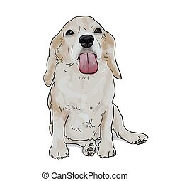 Adorable beagle ,sticky tongue out, sitting on white background
