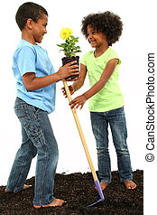 Adorable Black Brother and Sister Planting Flowers Together in studio, standing in dirt, over white.