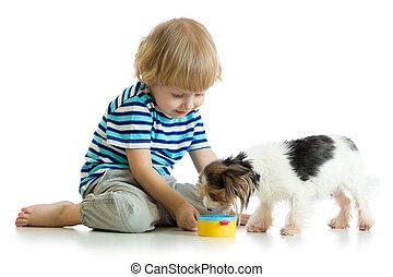 adorable boy feeding a puppy
