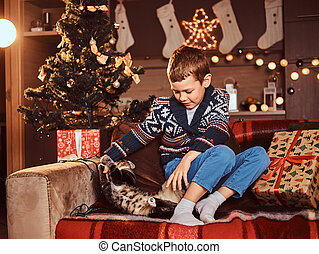 Adorable boy playing with his cat while sitting on sofa in decorated room at Christmas time.