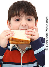 Adorable Caucasian Boy Child Eating Peanut Butter Sandwich in Studio