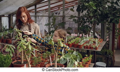 Adorable child is counting flowers in greenhouse while her mother is entering data in tablet and talking to her daughter. Family business and agriculture concept.