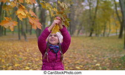 Adorable child reaching branch of tree in autumn - Lovely...