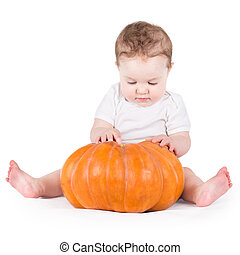 Adorable curious baby girl playing with a big pumpkin on white b