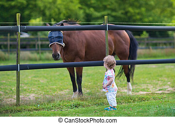 Adorable little baby girl playing with a horse on a farm in...