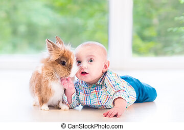 Adorable little baby playing with a funny real bunny on the floo