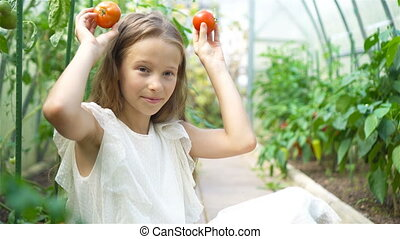 Adorable little girl harvesting cucumbers and tomatoes in...