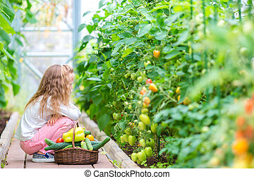 Adorable little girl harvesting in greenhouse. Portrait of kid with the big tomato in hands
