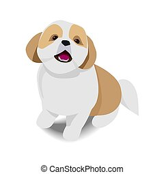 Adorable sitting brown and white dog with shadow on white background