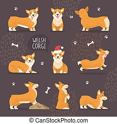Adorable Welsh Corgi Dogs with Yellow Fur Set - Adorable...