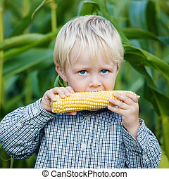 Adorable young boy eating corn outside