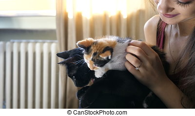 Adorable young couple in the living room relaxing and playing with their cats