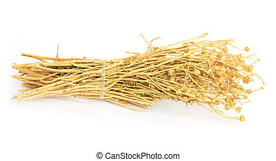 adraspan - dried grass of Central Asia