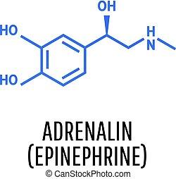 Adrenaline (adrenalin, epinephrine) molecule isolated on white background. Vector icon.