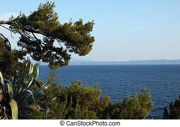 Adria Makarska - the Adria in Makarska, Croatia
