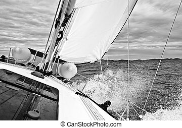Sailing in the Adriatic sea during cold summer
