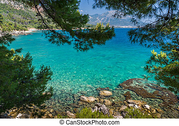 Adriatic sea bay view through the frame of green tree branches. Montenegro.