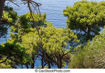 adriatisches meer, ansicht
