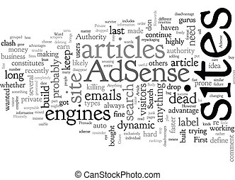 Adsense Or Authority Site text background wordcloud concept