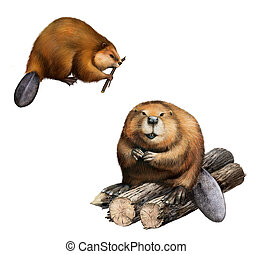 Adult Beaver sitting at logs.  Isolated Illustration on white background.