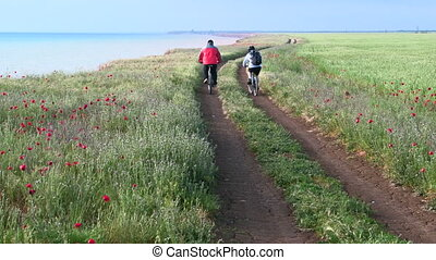 Adult couple riding bicycles along the seashore down a dirt road, rear view