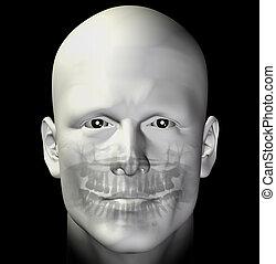 adult male dental scan - Adult man dental scan x-ray. 3d...