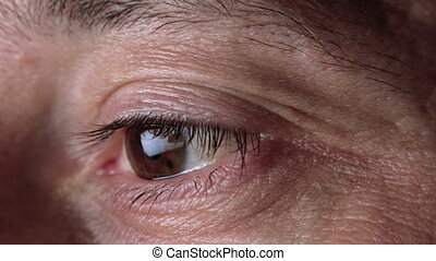 Adult Male Eyes Watching, Eye Movem