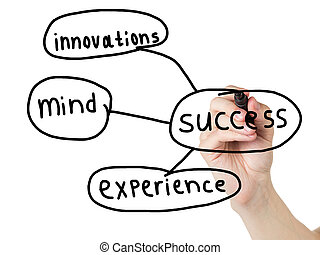 adult man hand drawn diagram of components of success