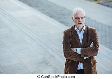 adult person with gray hair elegant dressed outside - adult...