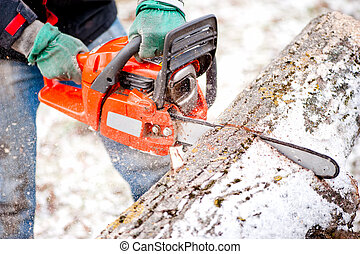 Adult worker cutting trees with chainsaw and tools
