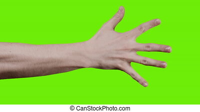 adult young man hand counting one to five over green screen...
