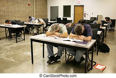 adulte, ed, -, endormi, dans classe