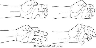 adulte, homme, main, tenir, quelque chose