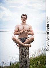 adulto jovem, fazendo, ioga, ligado, um, toco, em, natureza