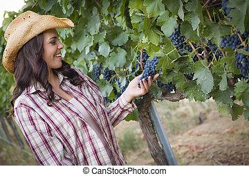 adulto joven, hembra, granjero, inspeccionar, uvas, en, viña