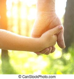 adulto, segurar uma mão criança, close-up, mãos, natureza, em, experiência.