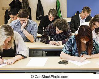 adultos jóvenes, estudiar