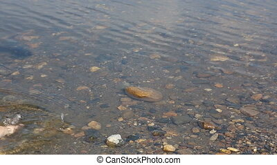 Adult's and child's feet in water