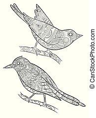 adults., cuerpo, poco, colorido, sentado, patrón, páginas, ilustración, pájaro, vector, rama, salvaje, aves