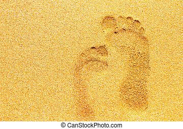 adults., encombrements, sable, enfants