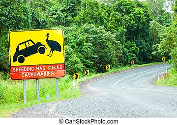 advarsel, australien, tegn, vej, cassowary