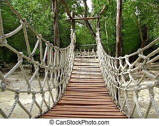 Adventure wooden rope suspension bridge in jungle rainforest