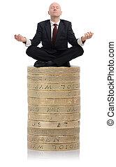 adviseur, financiële guru