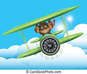 aereo, scimmia