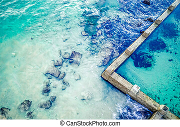 Aerial abstract of ocean and rock pool